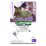 ADVANTAGE for Cats 4-8 kg