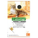 ADVANTAGE for Cats up to 4 kg