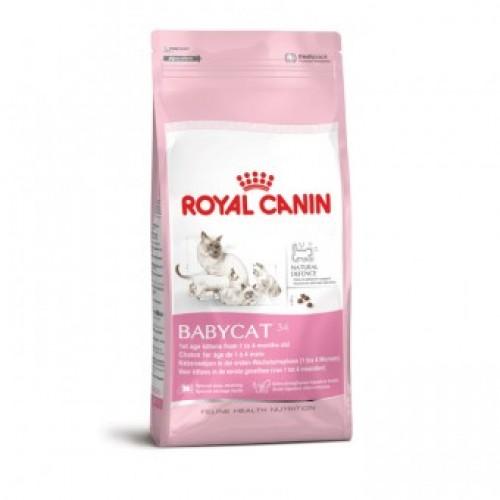 Royal Canin (Роял Канин) товары для животных: корма для