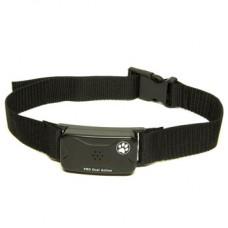 Pet Tags Pro Line Adjustable No Bark Dog Collar Large