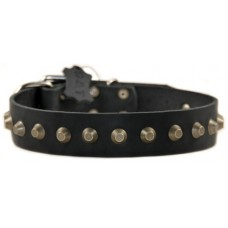 Dog Collar Leather with Spikes 40 mm