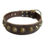 Dog Collar Leather with Spikes 50 mm