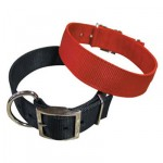 Dog Collar Nylon Double-Stitched 25 mm