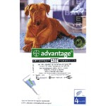 Advantage for Dogs Large Breed 25kg+
