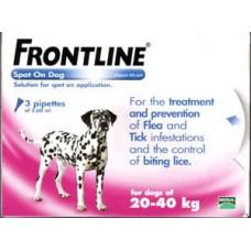 Frontline Plus Ampoules Medium Breed 20-40 kg
