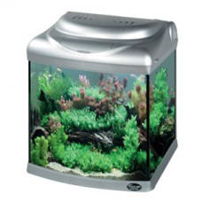 Atman Aquarium CR320 + Fish + Air Pump + Water Filter + Food