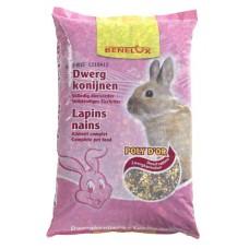 Dwarf Rabbits Complete Mixture Benelux